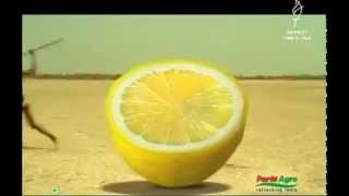 Super Funny Lemon Juice Commercial!