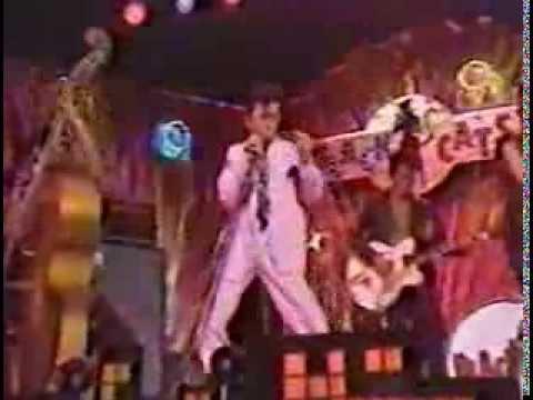 BLACK CATS 80's Rockabilly Boogie MODERN ROCKABILLY
