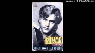 Shawn Camp - Fallin' Never Felt So Good