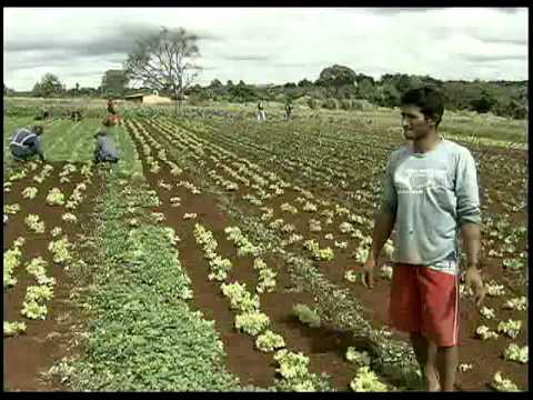 caminhos-dos-agrotoxicos-do-brasil