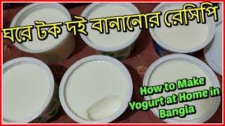 ঘরে টক দই বানানোর রেসিপি | How to Make Yogurt at Home in Bangla