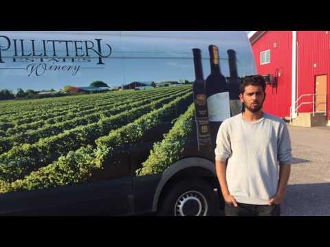 Top Wineries in Niagara