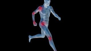 Biomeccanica e nordic walking