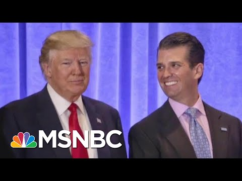 President Donald Trump Campaign And A 'Willingness' To Collude   The Last Word   MSNBC