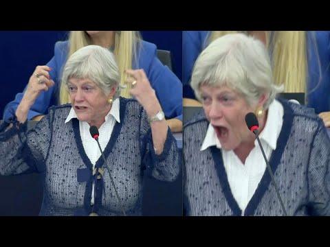 Raging Ann Widdecombe blasts anti-Brexit MEP in EU Parliament clash, explaining Boris's success