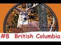 Cabela s Ultimate Deer Hunt: Open Season Part 8 British