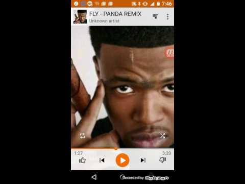 DC Young Fly-Panda Remix