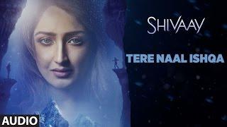 TERE NAAL ISHQA Audio Song SHIVAAY  Ajay Devgn