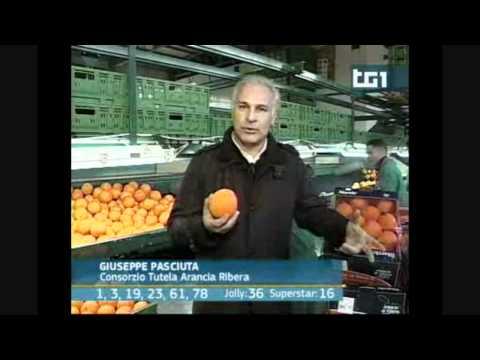 l'arancia dop di ribera