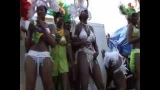 Toronto Carnival Caribana 2012 SVG Highlights