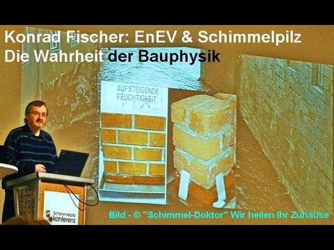 Pilzbefall: EnEV & Schimmelpilz: Die Wahrheit der Bau ...