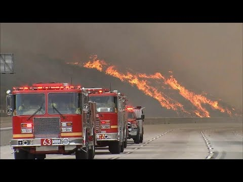 LA battles largest wildfire in city's history