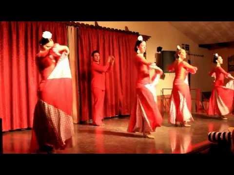 Ballet Azahara actuando en Feria del Sur (Romeral del Rocio) Video