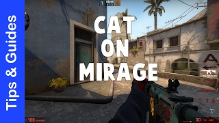 how to hold cat on de_mirage, remake of one of my very first ever videos.