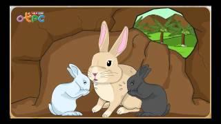 สื่อการเรียนการสอน กระต่ายไม่ตื่นตูม ป.3 ภาษาไทย
