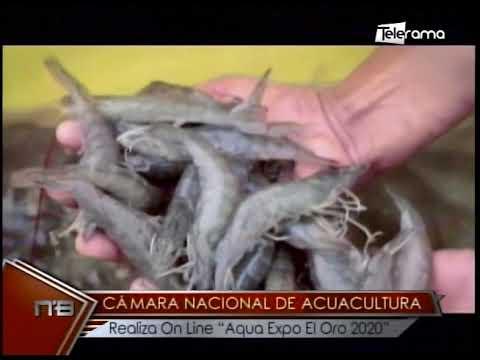 Cámara Nacional de Acuacultura Realiza On Line Aqua Expo El Oro 2020