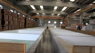 Производство извести и производные IGEA Calce