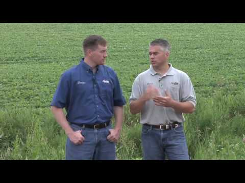 Using Manure (From Ag PhD #592 8/9/09) (видео)