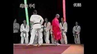 Shaolin Monk vs Taekwondo Master