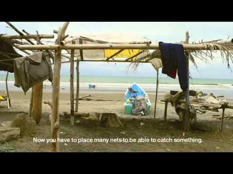Untangling The Fishing Net