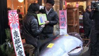 Worlds Most Expensive Sushi Blue Fin Tuna Sold in Tokyo Japan ID-2553