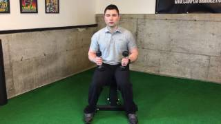 Dumbbell Seated Reverse Flye
