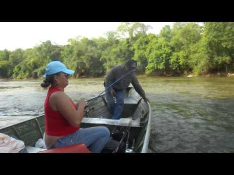 Pesca de Dourados com Iscas Artificiais 2: Rio Miranda