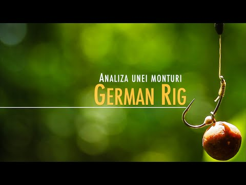 Analiza unei monturi: German Rig