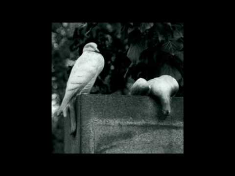 , title : 'Sono solamente stanco da morire- Roberto Vecchioni'