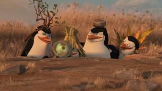 Video madagascar penguin clever trick || Penguin_rocks MP3, 3GP, MP4, WEBM, AVI, FLV April 2018