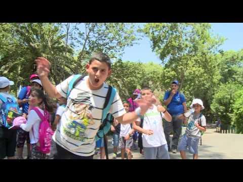 مخيم التوعية التوحيدية 2015 - حركة الشبيبة الدرزية ومؤسسها النائب حمد عمار