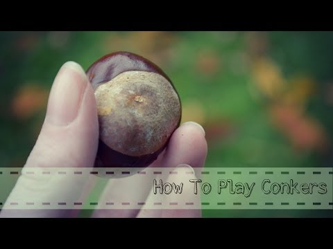 How To Play Conkers!