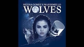 Selena Gomez X Marshmello - Wolves (ACAPELLA) Free Download