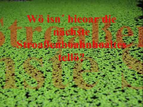 Ostdeutsch für Anfänger.wmv (видео)