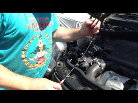 Где номер двигателя на ситроен с4 1.6 фотография