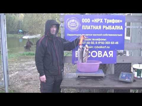 Видео отчет о рыбалке за 28 сентября 2019
