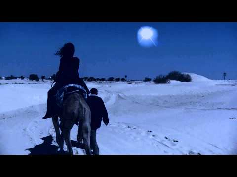 'Interroge l'étoile' : Poème de Nicole Coppey