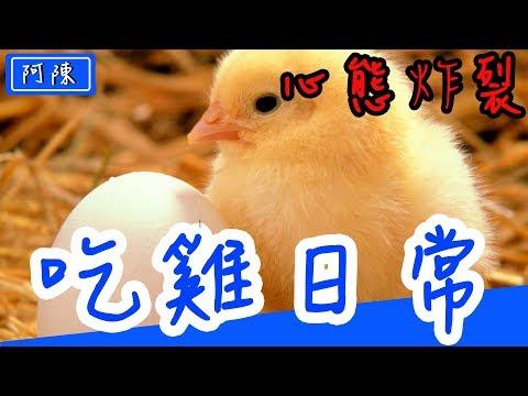 【絕地求生】PUBG 第二就當自己吃雞 ?
