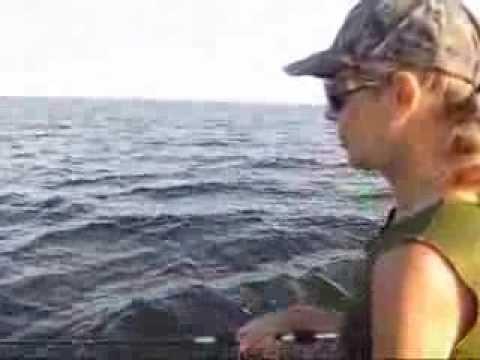 рыбалка киевское море отчет