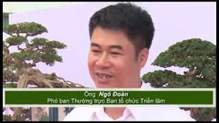 """Triển lãm cây cảnh nghệ thuật Bonsai Yên Tử lần thứ hai hứa hẹn """"mãn nhãn"""" công chúng"""