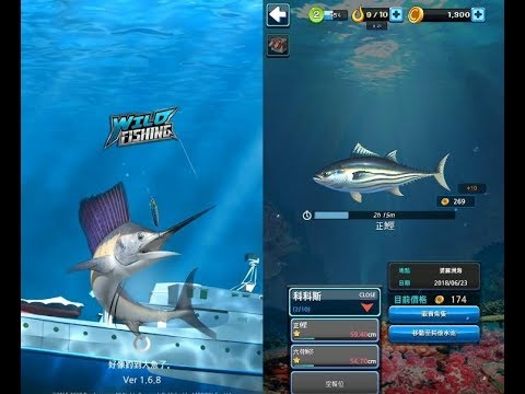 《野外釣魚》手機遊戲玩法與攻略教學!