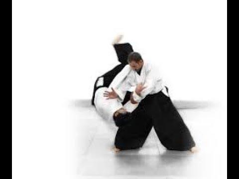 Aikido vs Aikido Good Randori. Рандори.