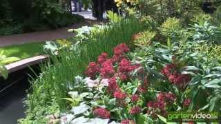 #1229 Chelsea 2013 - East Village Garden mit Azaleen