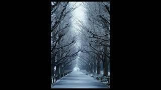 윤딴딴-겨울을 걷는다