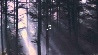Low Roar - Friends Make Garbage (Good Friends Take It Out) w/ Lyrics - YouTube