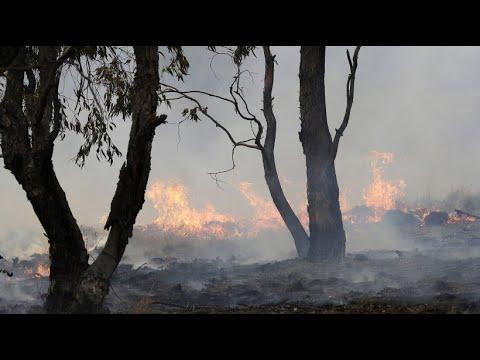 Ureinwohner erinnern an traditionelle Brandvorsorge