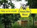 Honey Bee Wood
