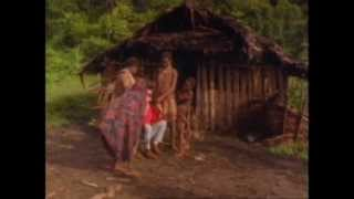 This film reveals the rich tribal heritage of women in New Guinea by examining ancient customs and beliefs. It also reveals a modern woman challenging ...