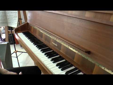 הפסנתר-נרדה פלס