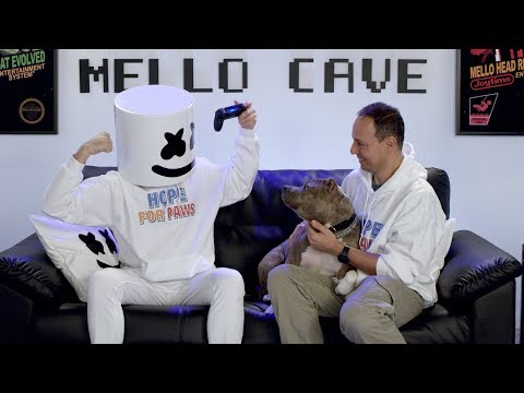 Marshmello x Hope For Paws - Making Lives Happier